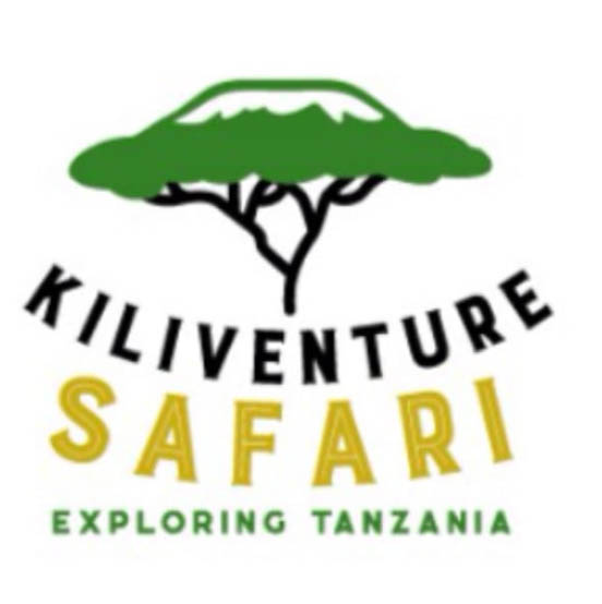 Kiliventure Safaris